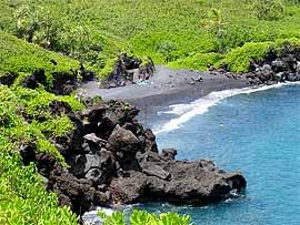 Hawaiian Algae